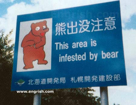 Funny Pictures go here Bear-infestation