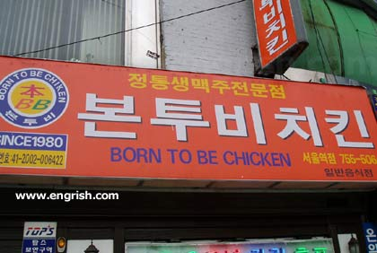 Engrish - Born to be chicken - Nacido para ser pollo