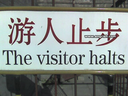 the-visitor-halts